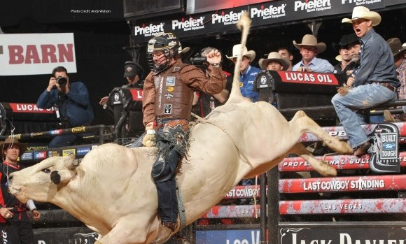 The Dangers and Training for Bull Riders