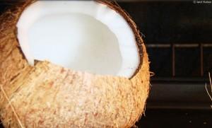coconut janet hudson
