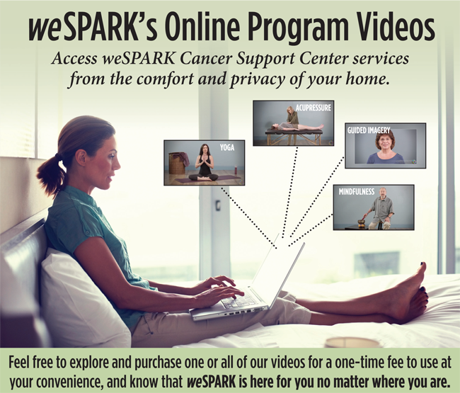 weSPARK Online Video Flyer smaller